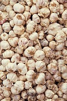 India, Kerala, Garlic in market