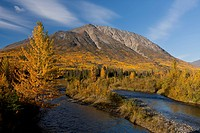 Scenic Autumn view along the Alaska Highway near the Million Dollar Falls campground, Takhani River, Yukon Territory, Canada