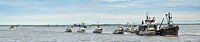 Drift net boats line up with an anchored Ocean Beauty Seafoods tender to deliver the morning´s catch of sockeye salmon in Ugashik Bay in Bristol Bay, ...