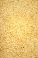 High resolution of Parchment
