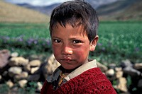 Boy, portrait, Kibber, Spiti, Himachal Pradesh, Indian Himalayas, North India, India, Asia
