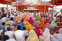 Instructions taking place in the tent of a spiritual leader, Kumbh Mela, Haridwar, Uttarakhand, formerly Uttaranchal, Indian Himalayas, North India, I...