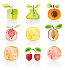 Abstract fruit icons _ vector icon set
