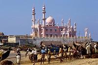 India Kerala Kovalam fishermen