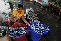Papuan woman selling fish at the fish market in Biak, Kota Biak, Biak Island, Irian Jaya, Indonesia, Southeast Asia, Asia