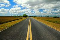 highway to flamingo in everglades national park florida usa