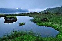 Small lake, nocturnal mood, Hornbjarg, Hornvík or Hornvik bay, Hornstrandir, Westfjords, Iceland, Europe