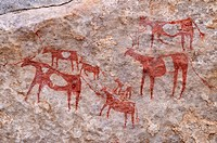 Painted herd of cows, neolithic rock art at Tin Meskis, Immidir, Algeria, Sahara, North Africa