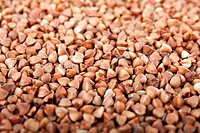 Healthy eating cereal food _ brown buckwheat seed