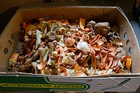 Vegetable peelings in cardboard box