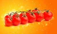 Fresh tomatoes in abstract orange background