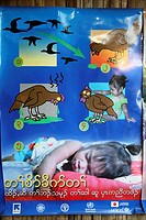 Poster on public health issues involving bird flu, a disease infectious to humans Around 130,000 Burmese refugees have settled in Thailand due to opre...