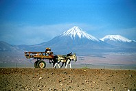 Chile, San Pedro de Atacama, An Indian cart before some Andes Volcanoes