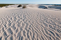 White sand dunes in Nambung National Park