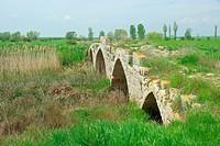Sasamon römische Brücke _ Sasamon roman bridge 03