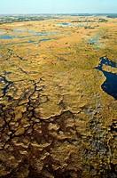Okavango delta aerial photograph, Botswana