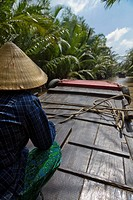 Person in Conical Hat on Boat in River, Rear View, Mekong Delta, Vietnam