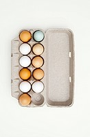 Colored eggs in egg carton