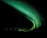 Aurora Borealis. View of the Aurora Borealis northern lights over trees. The Aurora Borealis is visible as a long green curved streak running from top...
