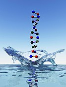 Artwork of a DNA deoxyribonucleic acid molecule coming out of water or splashing into water. This double helix spiral genetic molecule found in all li...