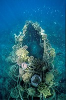 Artificial reef, low_volt power, method of enhancing the growth of corals and aquatic organisms, Bali, Indonesia, Asia