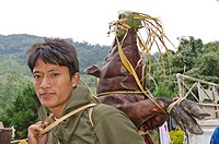 Villager of the Nishi tribe offering smoked pig at a wedding ceremony in Peni village, Arunachal Pradesh, India, Asia