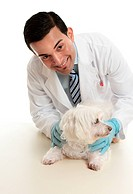 Veterinarian taking care of a pet dog