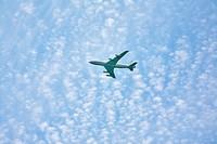 The white plane