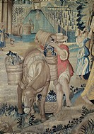Autumn Tapestry, woven by Jan Rost after designs by Bachiacca, 16th century. Detail of grape harvest.  Florence, Palazzo Vecchio Or Palazzo Della Sign...