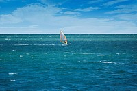 Windsurfer sailing on open sea on a windy day