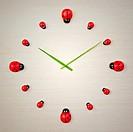 An image of a beautiful ladybird clock