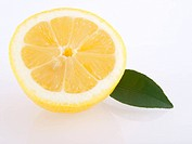 Lemon and leaf on white background _ reflection