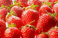 Fresh red strawberries, delicious summer temptation