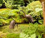 Carved storks in Japanese garden pond