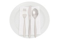 plate with cutlery and serviette, elegant dishware include clipping path