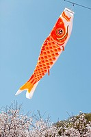Japanese carp kites, decoration on the Children´s Day