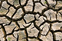 Cracked earth metaphoric for climate change and global warming.