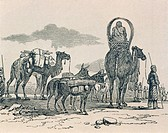 Caravan of nomads from the Timbuctoo region, from Travels and Discoveries in North and Central Africa by Heinrich Barth, 1861. Mali 19th century. Engr...