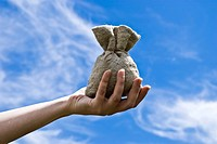 Hand with money bag on background sky
