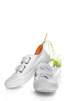 a white shoe with a carrot, a dutch tradition