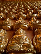 Many statue of gold Buddha on wood wall