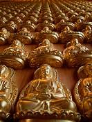 Many statue of gold Buddha on wood wall