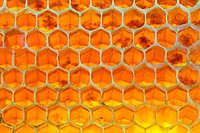 Honeycomb and Honey