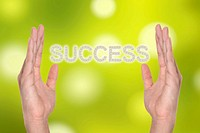 Success in hand isolated on white , successful business idea