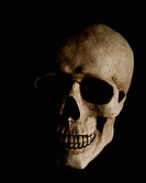 Human skull with dramatic lightning is isolated on a black background