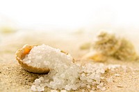 Macro image of a sea shell with sea salt crystals in the sand with a small depth of field.