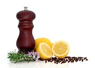Pepper mill with peppercorns, lemon fruit and rosemary herb flower leaf sprigs isolated over white background with copy space