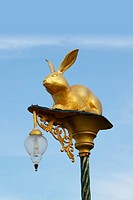 Rabbit bulb light.