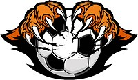 Tiger Claws Holding a Soccer Ball Vector Cartoon