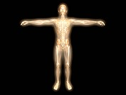 3D rendered visualization of the energy / astral body.
